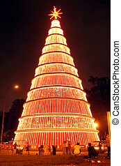 Christmas time - Gigantic Christmas Tree lightened at night ...