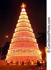 Gigantic Christmas Tree lightened at night in Sao Paulo Brazil