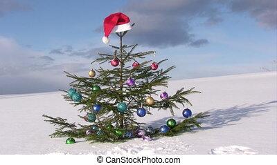 Christmas tree against winter  blue sky