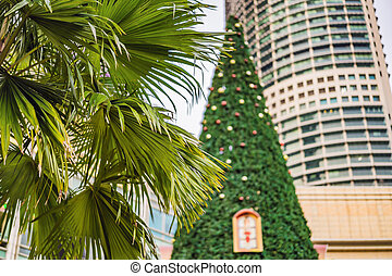 Christmas Tree and Palm Trees Decorated in tropical holiday location