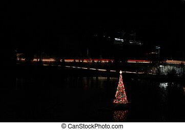 Christmas Tree at Lost Lagoon