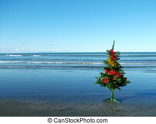 Christmas tree beach - A Christmas tree on a dark sandy...