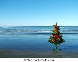 Christmas tree beach - A Christmas tree on a dark sandy...