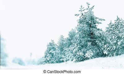 Christmas tree. beautiful winter snowing landscape in the...