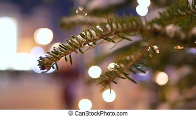Christmas tree bokeh lights