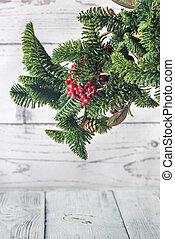 Christmas tree branch on the white background