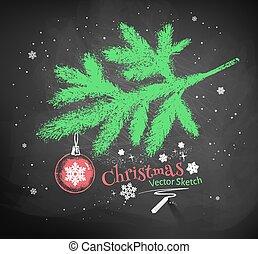 Christmas tree fir branch.