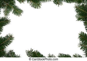 Christmas tree frame - Christmas tree twigs on a white...