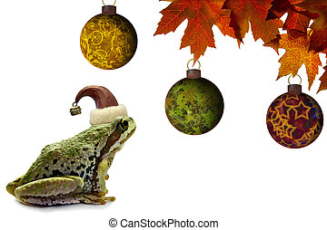 Christmas Tree Frog Sitting with Red Maple Leaves -...