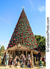 Christmas tree in Bethlehem, Palestine