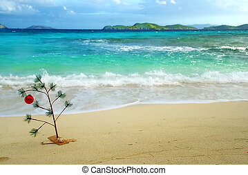 Christmas Tree in Caribbean - Christmas in the Caribbean is...
