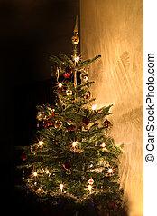 Christmas tree in room