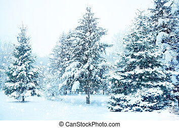 Christmas tree in snow - winter snow covered fir trees on...