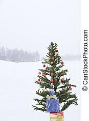 Christmas tree in snowy field