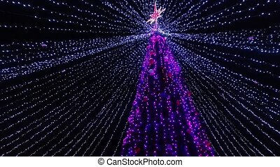 Christmas tree in the park at night.