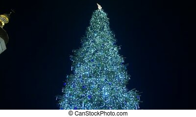 Christmas Tree In The Town Square - Christmas tree with...