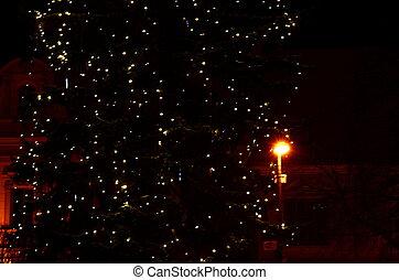 Christmas tree lighting