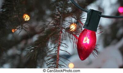 Christmas tree lights. Two shots.