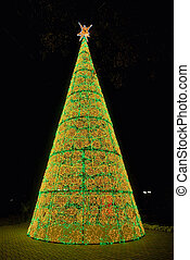Christmas tree on a night day