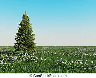Christmas tree on The daisy garden