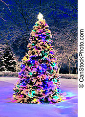 Christmas tree outside - Decorated christmas tree outside ...