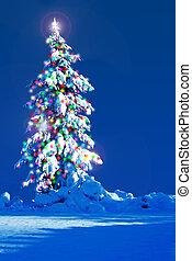 Christmas tree outside.