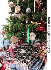 christmas tree  present
