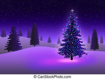 Christmas Tree - Stock image of pine tree with colorful...