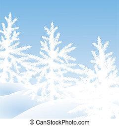 Christmas trees fir on a snow glade