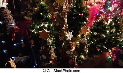 Christmas trees for sale on the fair