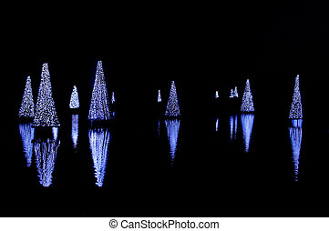 Christmas Trees Reflecting