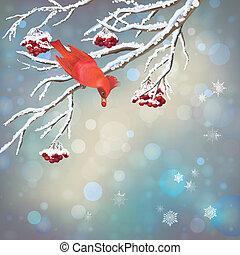 Christmas Vector Snowy Rowan Berries Bird Card - Vector...