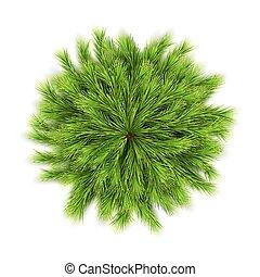 Christmas Vector Wreath