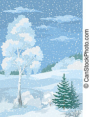 Christmas Winter Forest Landscape