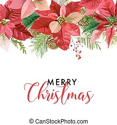Christmas Winter Poinsettia Flowers Card or Background with...