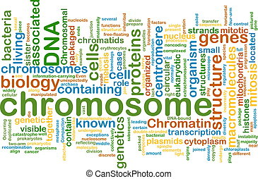 chromosome wordcloud concept illustration