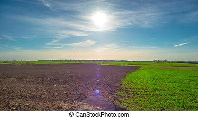 chronocinématographie, champ, panoramique, printemps, soleil