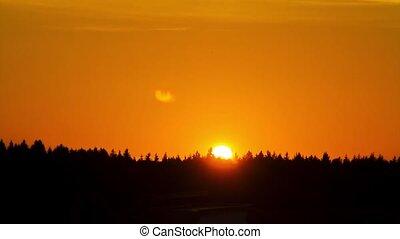 chronocinématographie, forêt, coucher soleil, sur