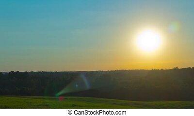 chronocinématographie, sur, coucher soleil, forêt