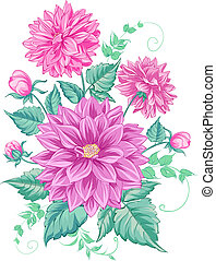 chrysanthème, isolé, design.