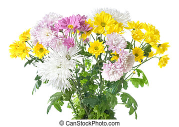 chrysanthemum bouquet isolated on white