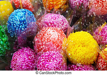 Chrysanthemum flowers in market