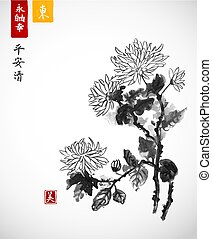 Chrysanthemum flowers. Traditional oriental ink painting sumi-e, u-sin, go-hua. Contains hieroglyphs - eternity, freedom, happiness, peace, tranqility, clarity, beauty