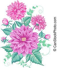 chryzantéma, osamocený, design.