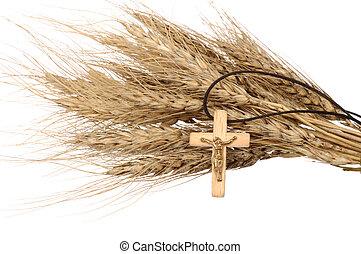 chrześcijanin, krzyż, i, pszenica