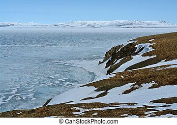 chukotka., sulista, costa, de, a, ártico, ocean.