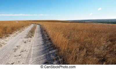 Chulky white road through a field of golden grass at sunlight. Camera slowly moves from left to right shows a meadow of dry grass. Blue sky on horizon