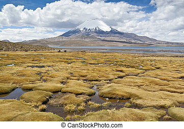 Chungara Lake and Parinacota volcano, Lauca National Park,...