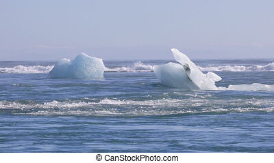 Chunks of ice drifting out to the Atlantic Ocean - Chunks of...