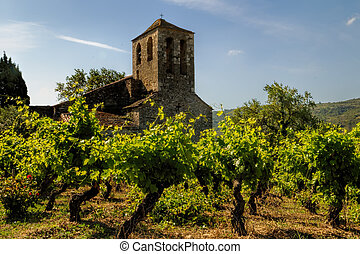 church and vineyards